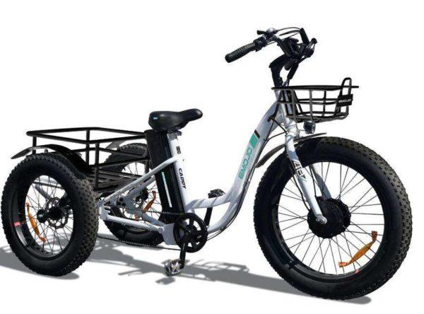EMOJO Caddy Fat Tire Trike
