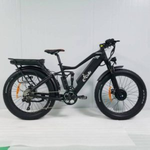 E-Cells Super Monarch AWD 1000