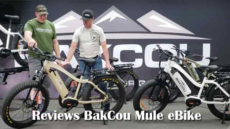 Reviews BakCou Mule eBike